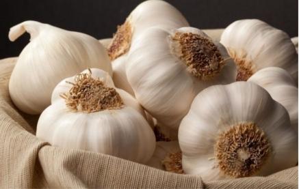 Avantajele-consumului-de-usturoi-Un-medicament-natural-eficient-si-ieftin-