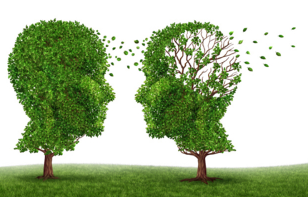 Living with a dementia patient and alzheimers disease with two trees in the shape of a human head and brain as a symbol of the stress and effects on loved ones and caregivers by the loss of memory and cognitive intelligence function.