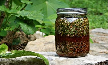 swedish-bitters-herbal-tincture