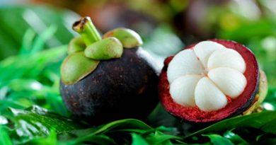 mangostino-mangostan-fruta-belleza-salud