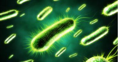 bacteria_electric_1