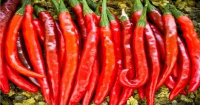 cayenne-paprika