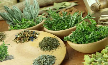 natural-herbs-700x445