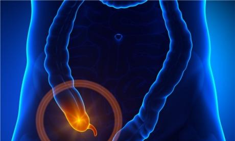 facts-about-appendix-ss-thumbnail-override