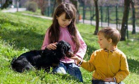 children-dogs-Lyme-disease-pet-expert-Steve-Dale