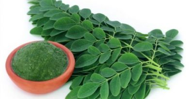 160118174632_moringa_640x360_thinkstock_nocredit