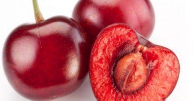 Cherry-seeds-1