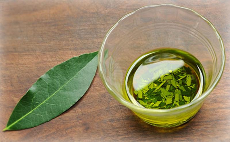 bay-leaf-oil